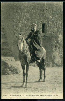 Cavalier Arabe ?