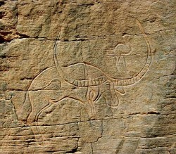 Pelorovis antiquus ou bubale