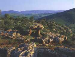 Dolmens de Roknia (Guelma)