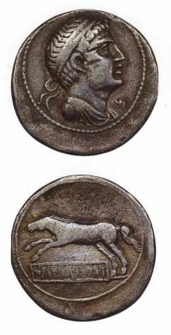 Monnaie à l'effigie de Vermina (Masaesyles)
